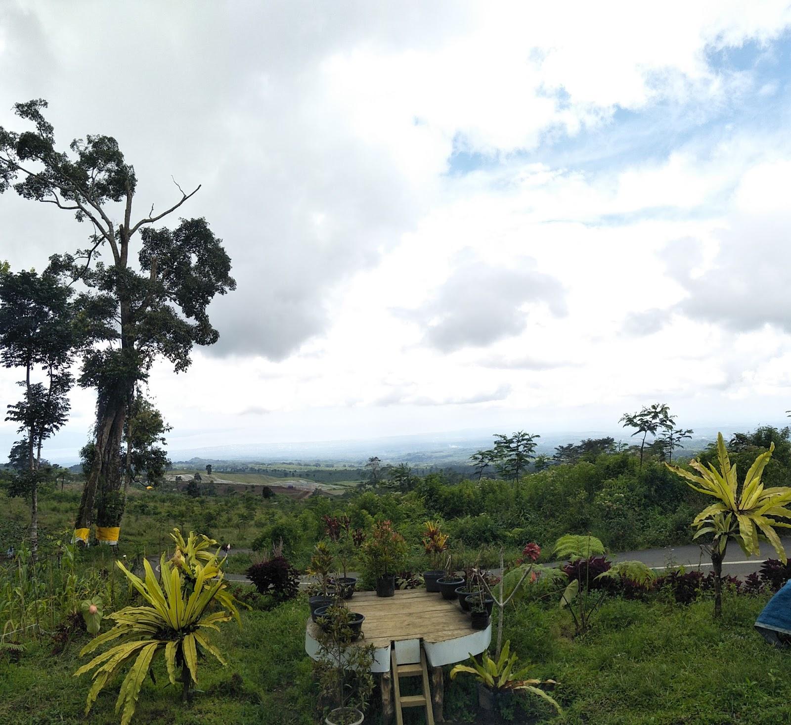 Blog Osing Gantasan View