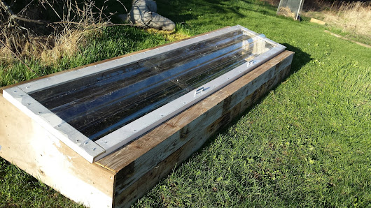 My New Cold Frame Garden Experiment