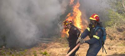 Μεγάλος ο κίνδυνος πυρκαγιάς στην δυτική Πελοπόννησο
