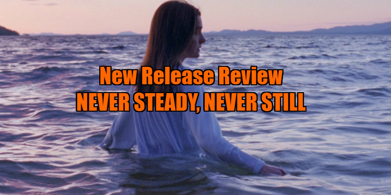 Never Steady, Never Still review