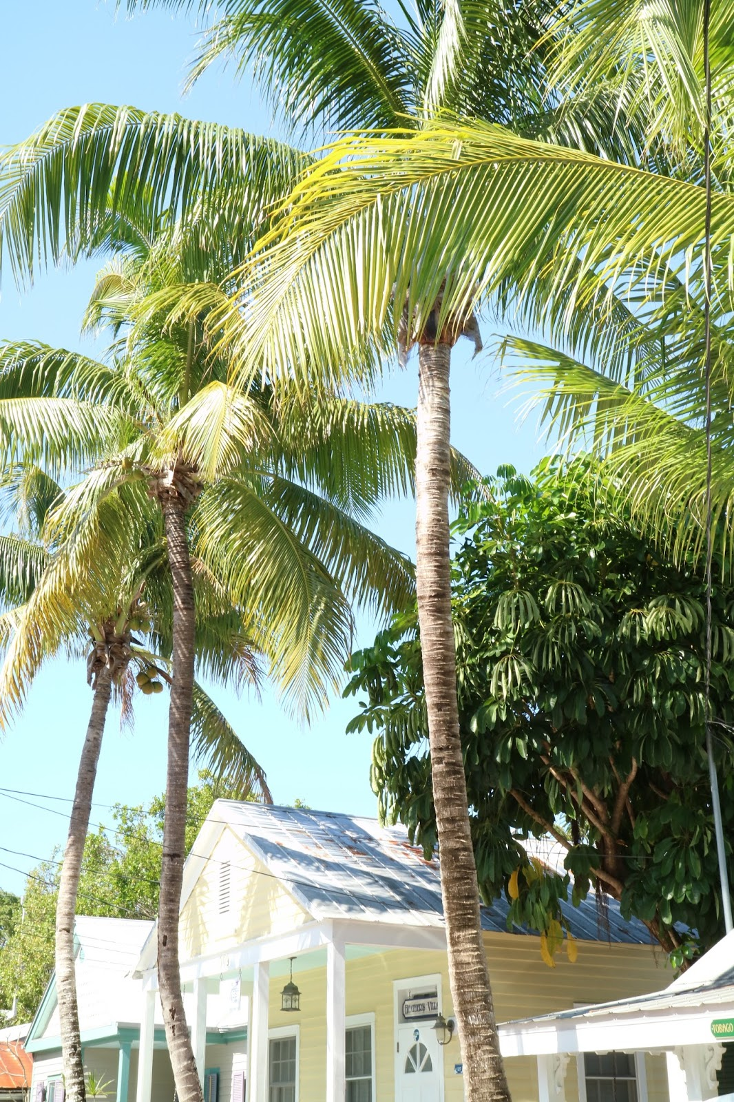 KEY WEST PHOTO DIARY