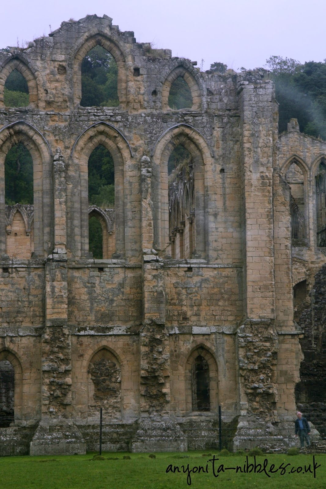 Rievaulx Abbey near Scarborough | Anyonita-nibbles.co.uk