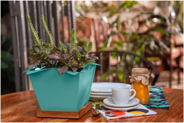 BLOOM planter by By Making