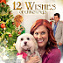 12 Wishes of Christmas (TV Movie 2011)