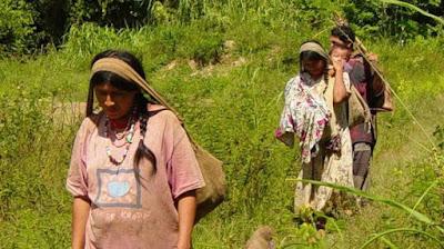 Mulheres indígenas com filhos nas costas