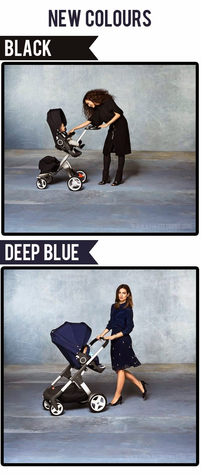 black and deep blue stokke xplory