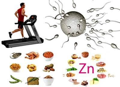 El ejercicio mejora la calidad del semen y los niveles de hormonas reproductivas
