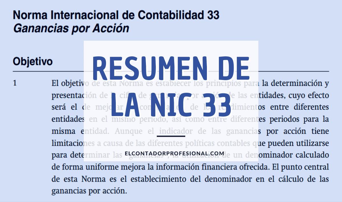 resumen de la nic 33