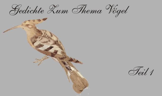 Gedichte Und Zitate Fur Alle Gedichte Zum Thema Vogel