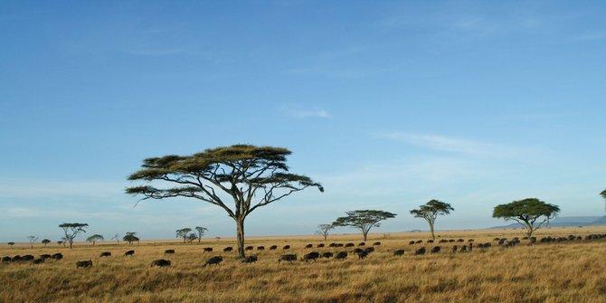Wilayah Afrika paling berbahaya untuk dilewati pesawat