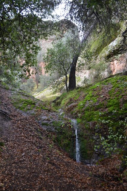 tiny tributary waterfall