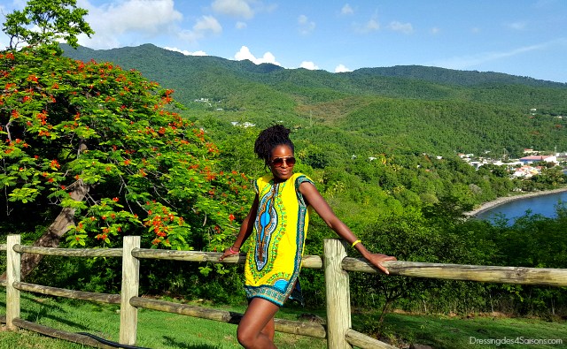 Dressing-des-4-Saisons-Dashiki-t-shirt-lookbook-rocher-plage-leroux-guadeloupe-microlocks-flamboyants
