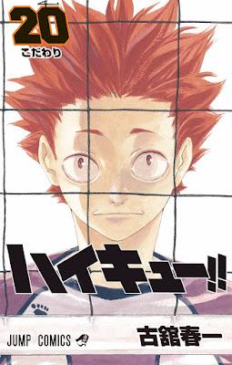 ハイキュー 第01-20巻 [Haikyu!! vol 01-20] rar free download updated daily