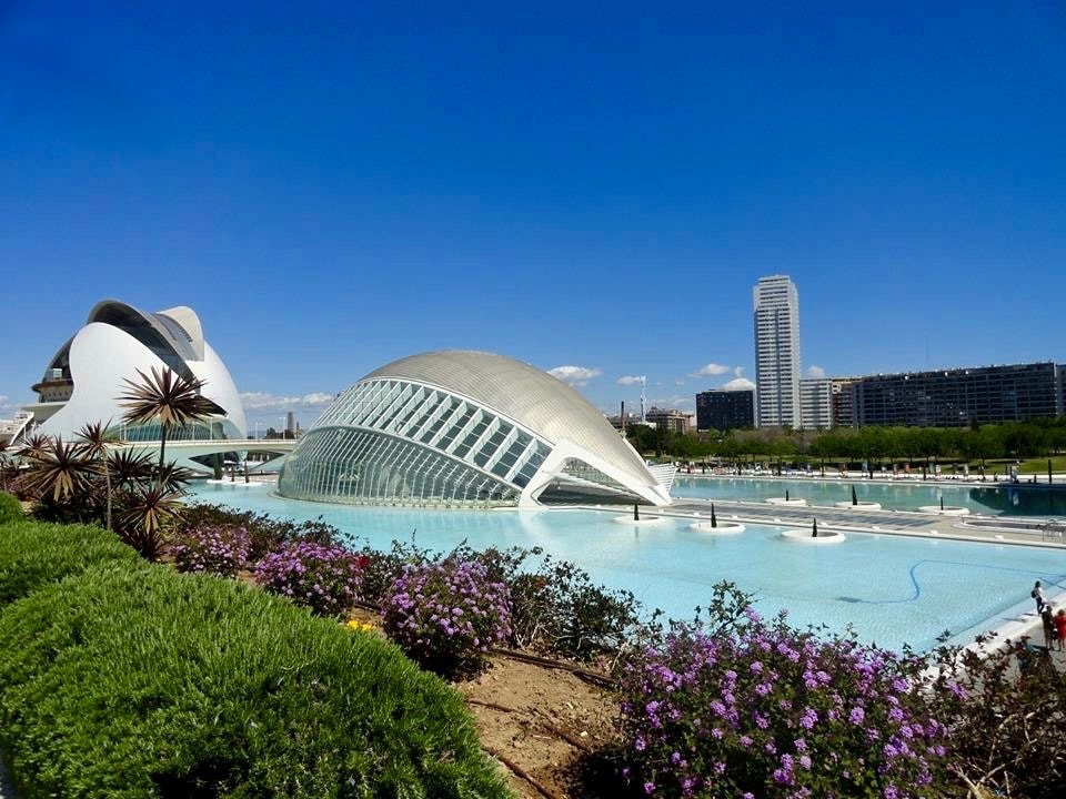 ciudad de las artes y las ciencias city of arts and science architecture valencia spain