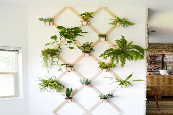 Selain Indah, 10 Ide Taman Vertikal di Dalam Rumah ini Bisa Kamu Contek