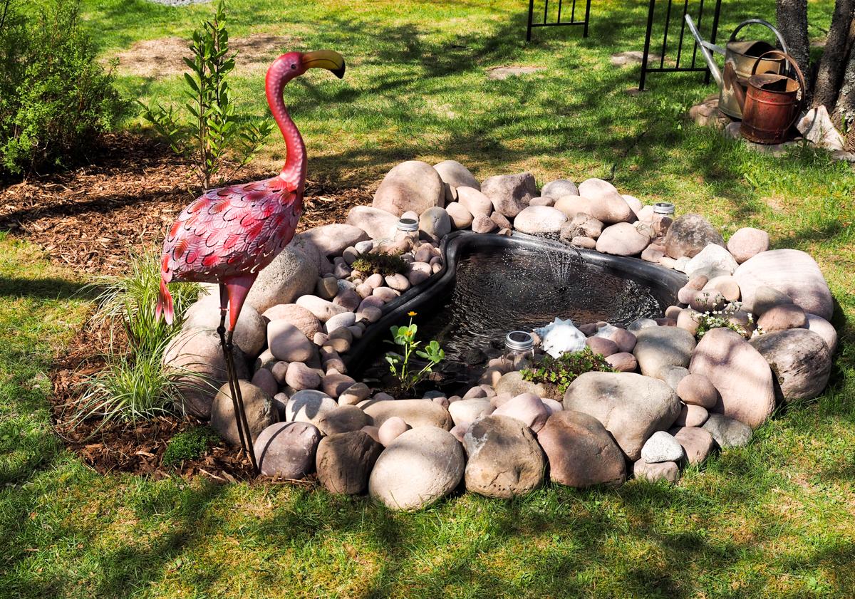 vesiaihe puutarhaan