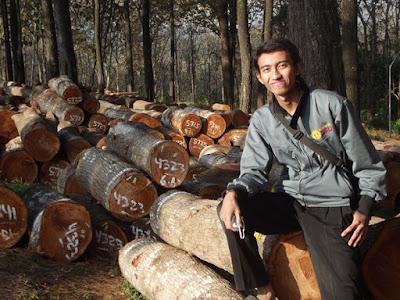 Selamatkan Hutan Kita Untuk Anak cucuk kita nanti