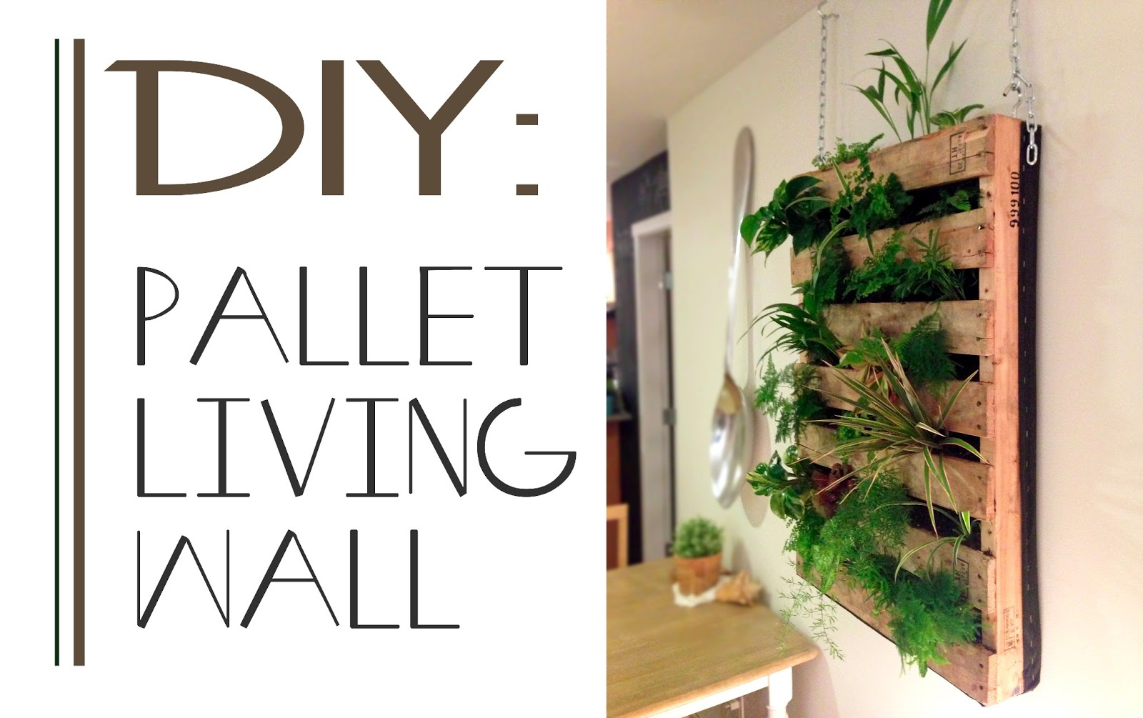 The Brew : DIY Pallet Living Wall