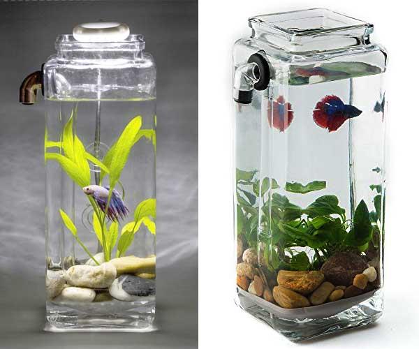 Jual Aquarium Unik