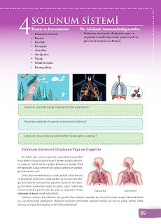 6. Sınıf Fen Bilimleri Ders Kitabı Cevapları Sevgi Yayınları Sayfa 69
