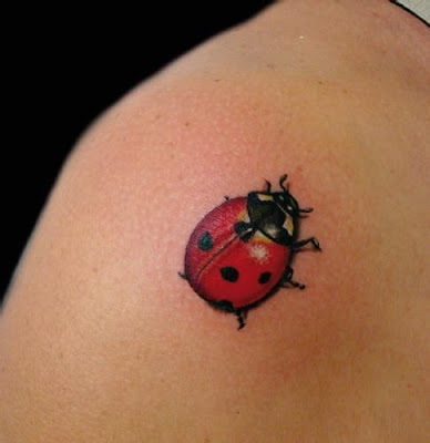 belong to the family of beetles referred to as Coccinellidae ✘ 44+ Best Ladybug Tattoos Ideas Designs For Summer 2020