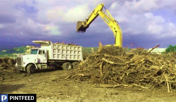 PintFeed | Cleanup Service Provider and Construction Company