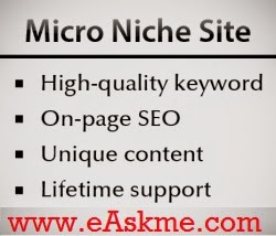 Micro Niche Sites : eAskme