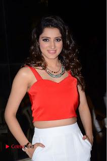 Actress Richa Panai Pictures at Eedu Gold Ehe Gummadikaya Function  0104