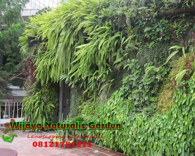 Jasa Taman Vertikal Surabaya, Tukang Taman Vertikal Surabaya, Tukang Pembuatan Taman Vertikal di Surabaya, Jasa Pembuatan Taman Vertikal di Surabaya