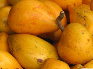 Canistel fruit images wallpaper