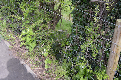 Criminal activity as thieves cut through fence in Turnditch Orchard