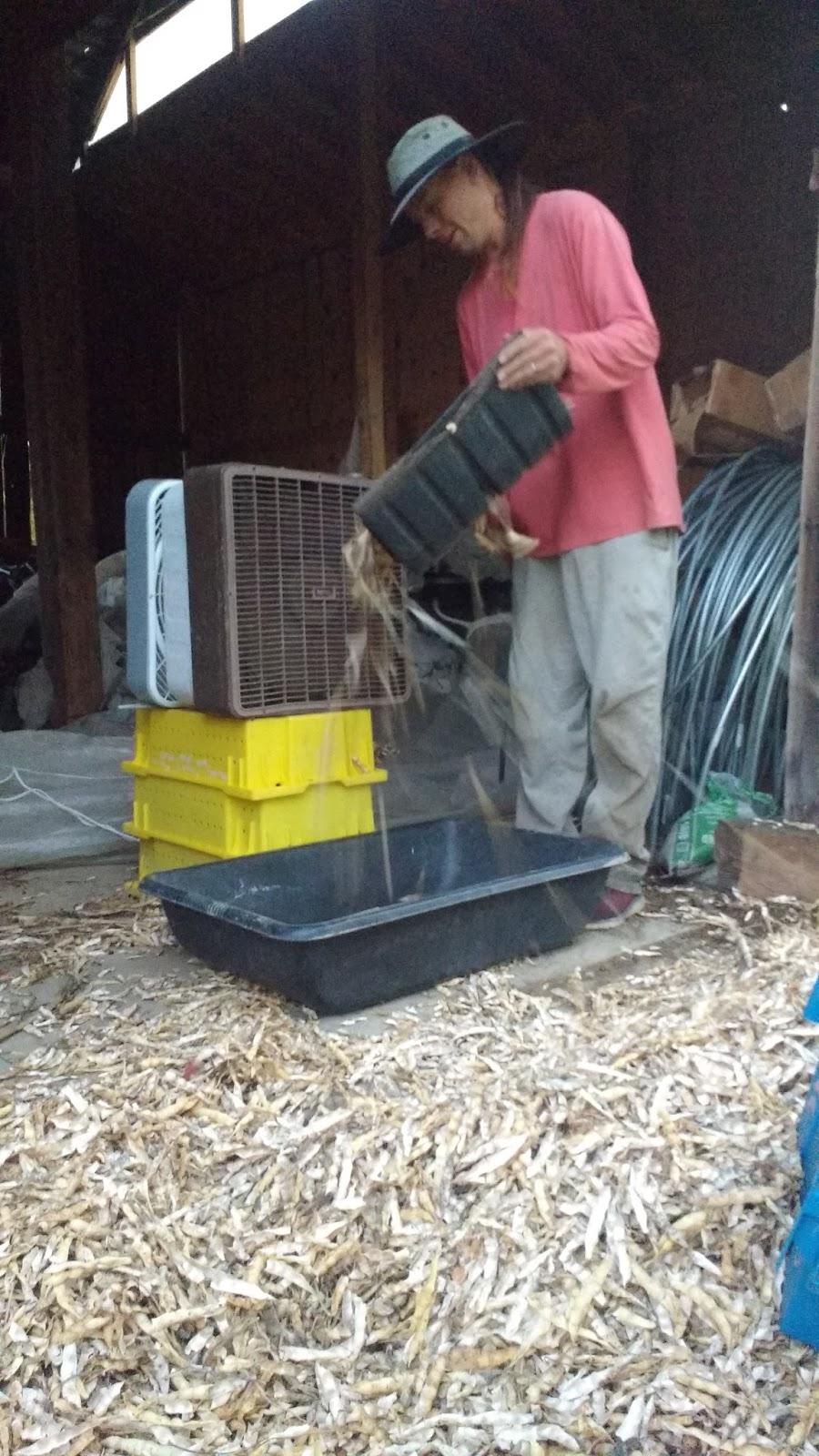 Muddy Fingers Farm Newsletter