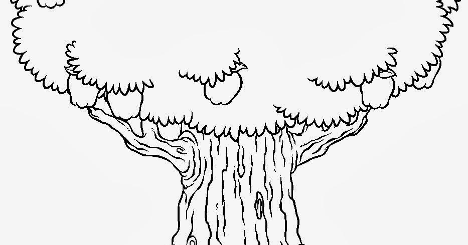 JORNAL R 7ª: Árvore Para Colorir
