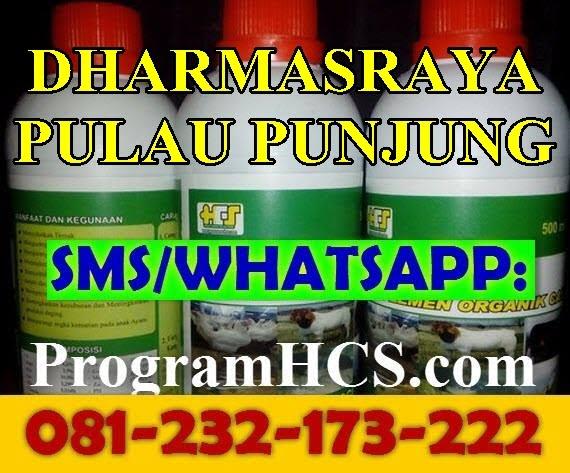 Jual SOC HCS Dharmasraya Pulau Punjung