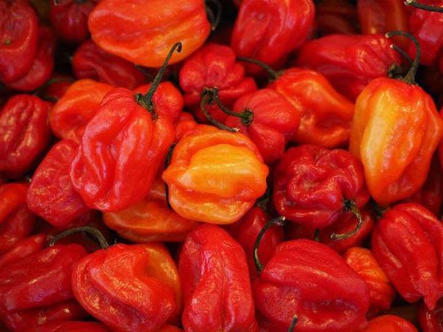 Beneficios del chile habanero