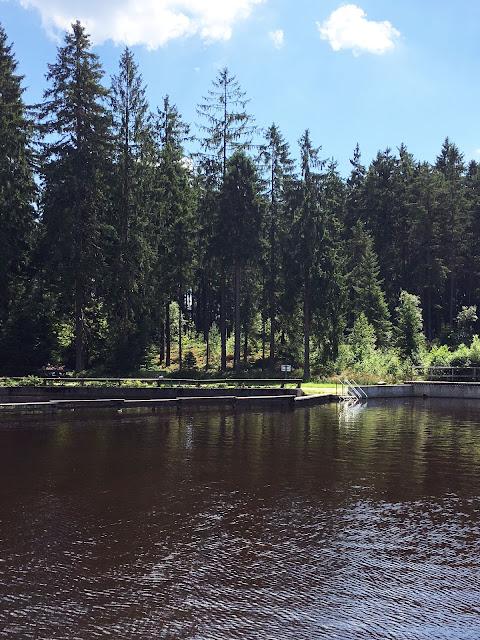 Naturmoorbad Fichtelgebirge