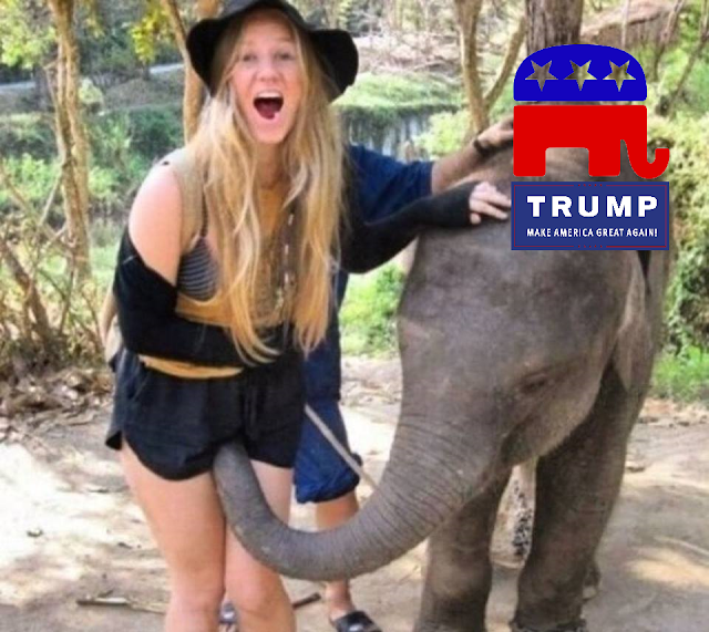 Funny Trump - Make America Great Again Elephant Gropes Girl Picture