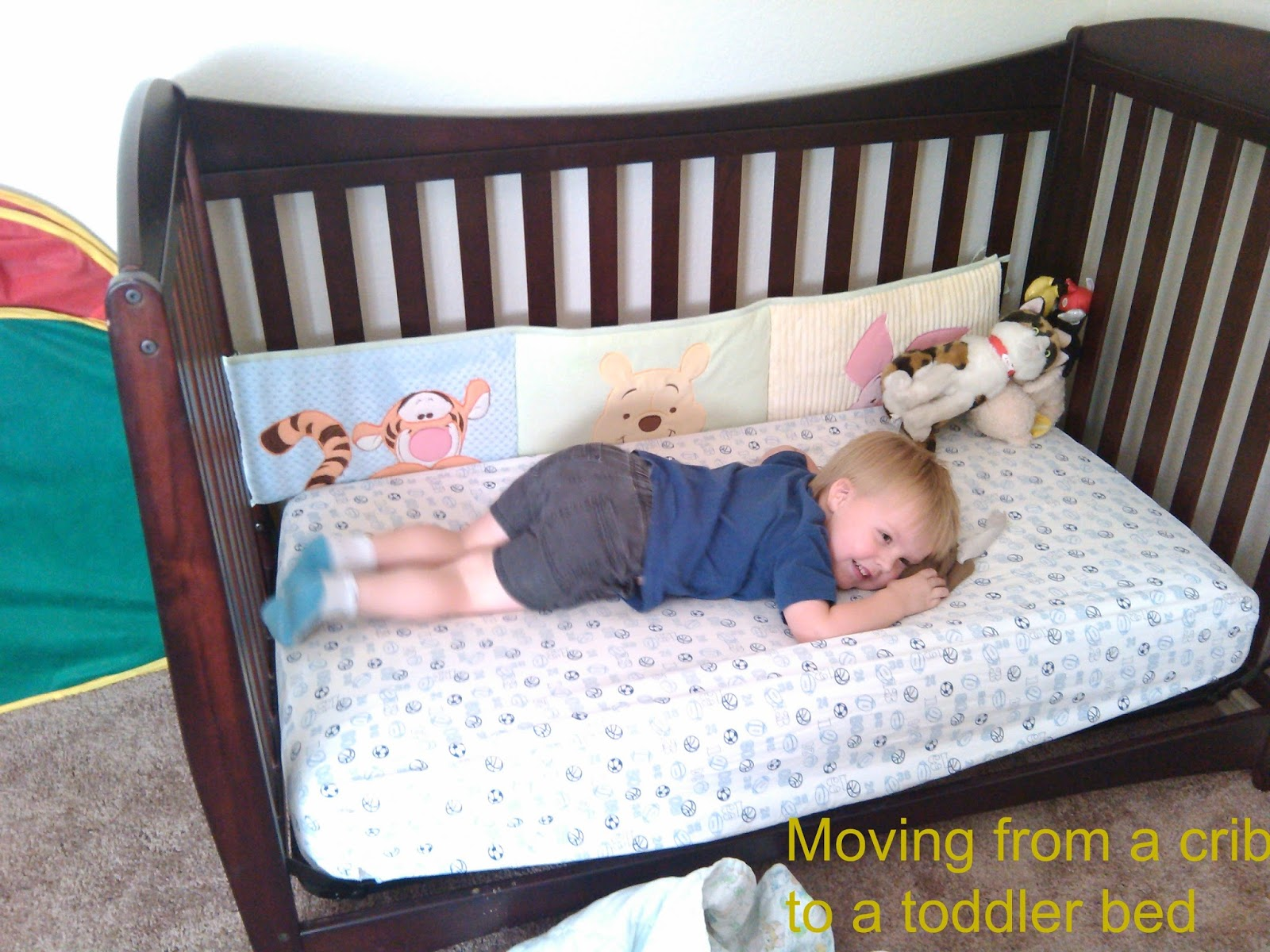 How Big Is A Toddler Bed.Transitions Moving From A Crib To A Toddler Bed Team