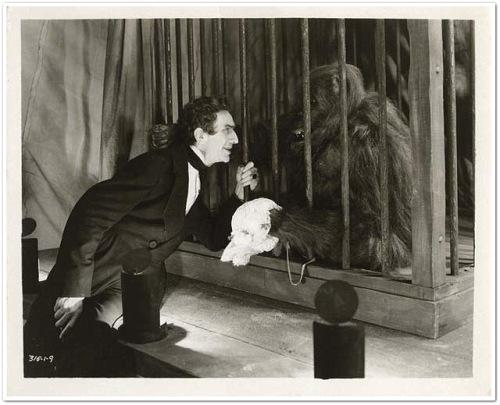 Sobrebia recreación de Lugosi en la película Murders in the rue morgue