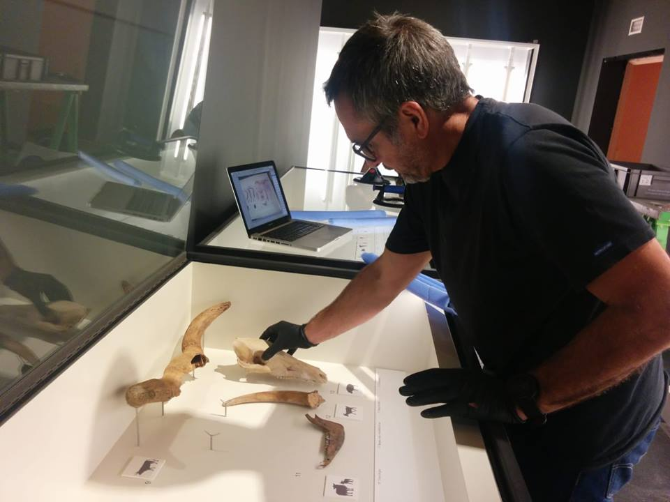 Montaje de 'La revolución neolítica. La Draga, el poblado de los prodigios' en el Museo Arqueológico Regional de Madrid. Foto: La Draga en Facebook