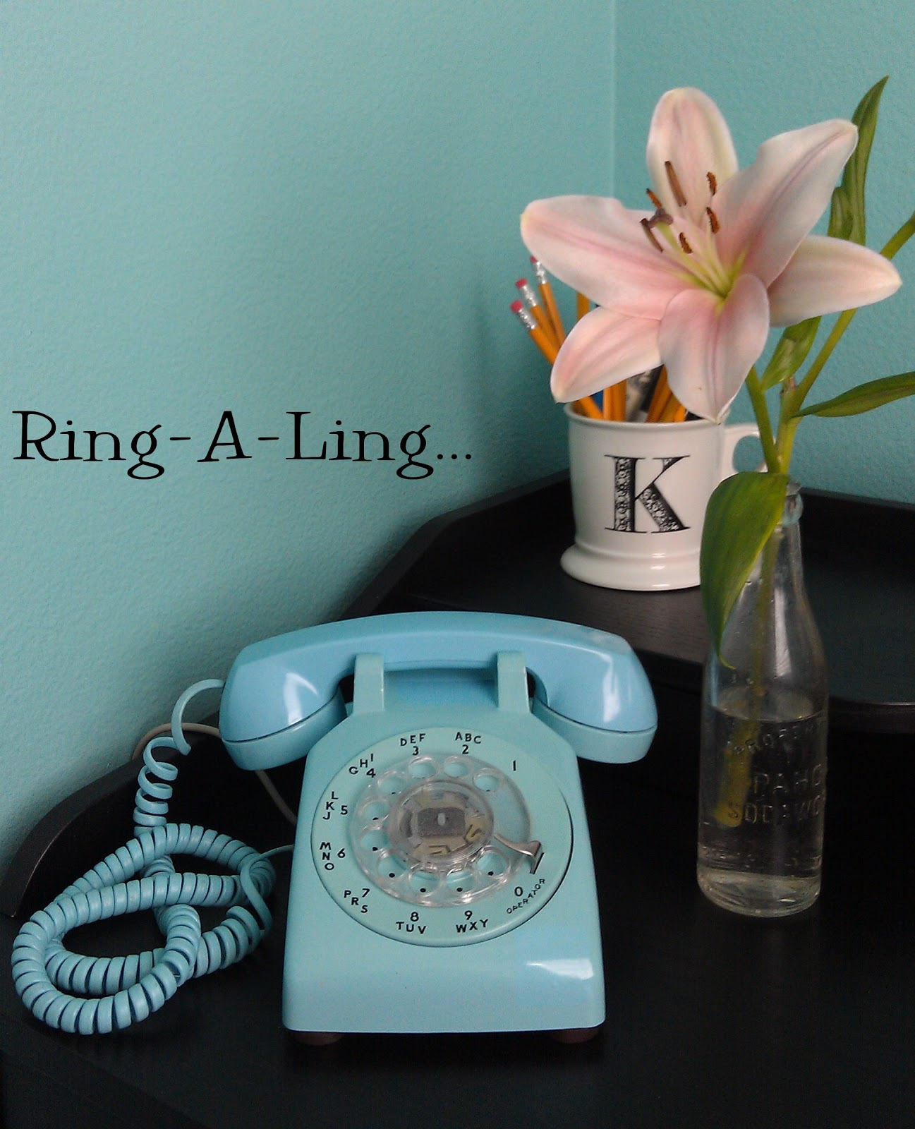 The Rambling Nest: My New Old Phone