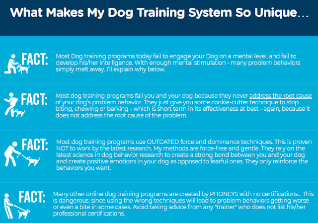 brain training for dogs adrienne farricelli, brain train for dogs by adrienne farricelli