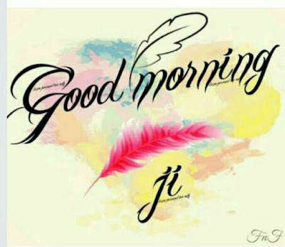 birds feather with good morning wish for whatsapp