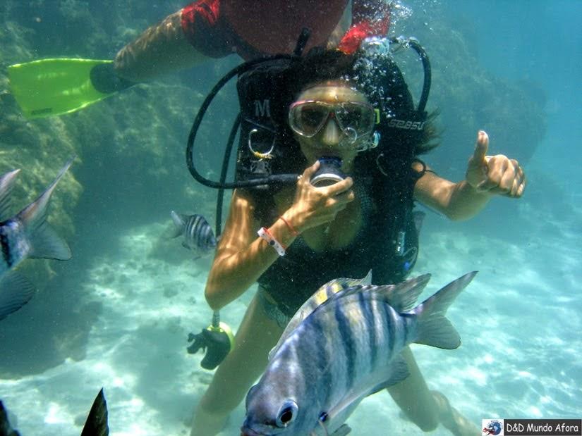 mergulho Piscina naturais de Maragogi Alagoas