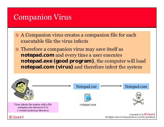 contents what is virus types of computer viruses ppt video