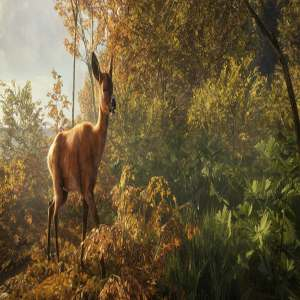 download thehunter call of the wild pc game full version free