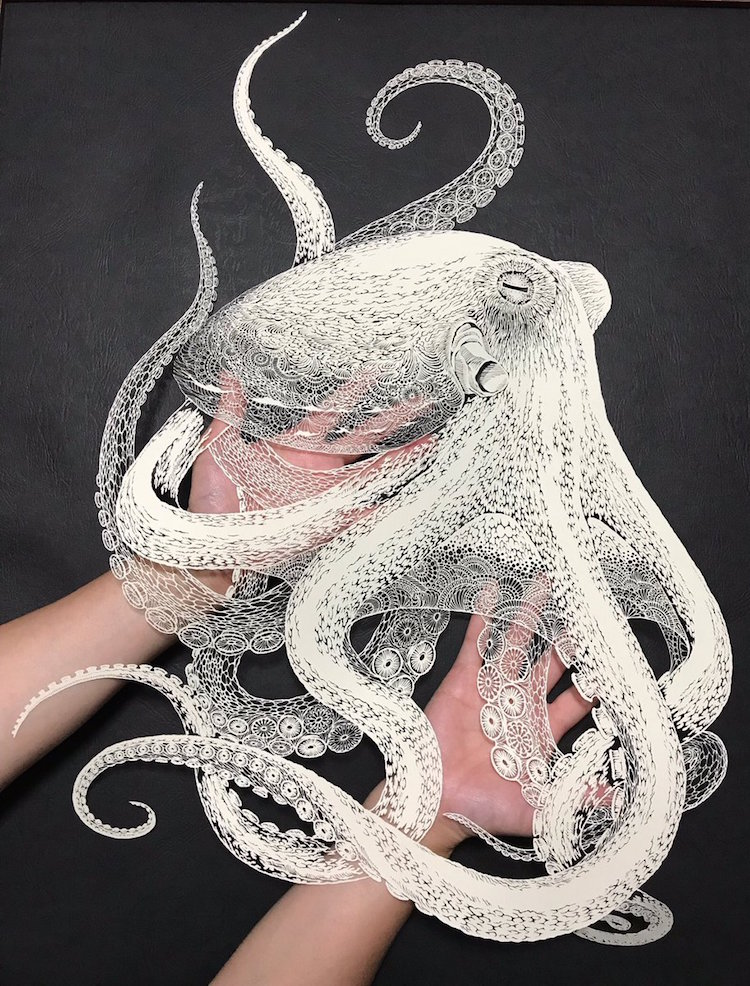 Japanese Artist Cuts Complex Paper Octopus From Single Sheet Of Paper