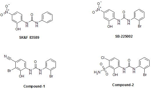 small molecule inhibitors of CXCR2