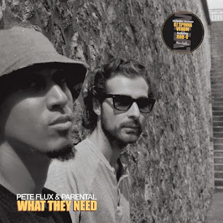 Pete Flux & Parental - What They Need (2017) - Album Download, Itunes Cover, Official Cover, Album CD Cover Art, Tracklist