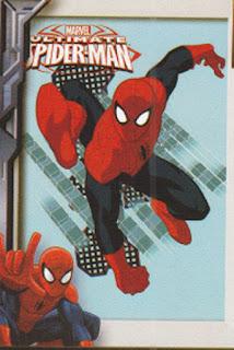Selimut Internal Spiderman